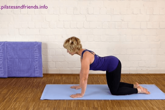 Faszien Pilates: Jumping Dog (2,5Min)   (6von10)